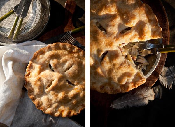 Sweet Leek and Turkey Pot Pie