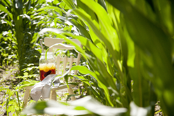 Cornfield Luncheon (Libbie Summers and Chia Chong for Salted and Styled)