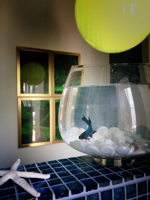 Bluefish framed by Framebridge (Libbie Summers)