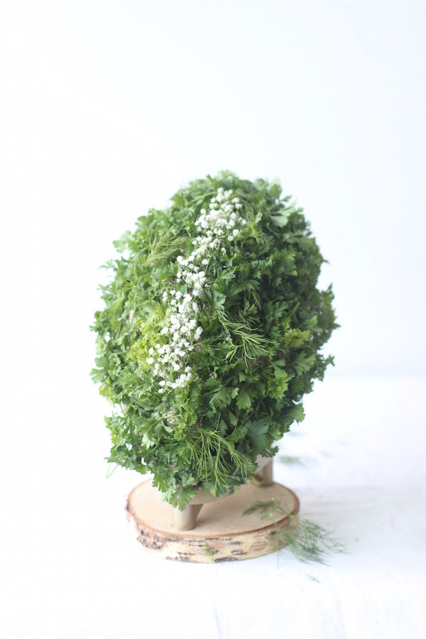 Herb Football from Libbie Summers