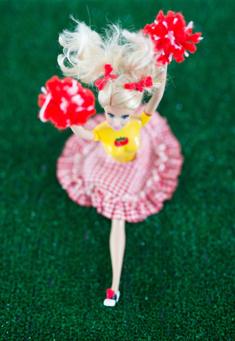 Barbie Clothing, Wholesome Barbie,Barbie Stories, Libbie Summers, Gingham Skirt, teresa earnest