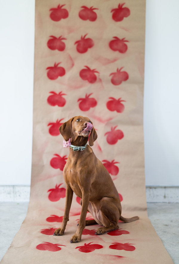 Dogs, Vizslas, tomato crafts, wrapping paper, Libbie Summers, A food-inspired life