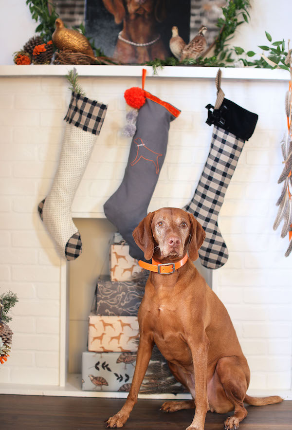 Christmas Stockings, Holiday Crafts, Sewing Crafts, DIY, Libbie Summers, Bird Dog, Plaid, Gingham