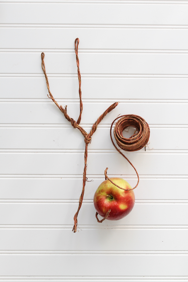 Apple Blossom Wreath, Libbie Summers, Paper Crafts, Wreath Making, Spring Wreaths, Cosmic Crisp Apples, Apple Wreath, Twine Branch Making